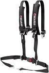Beard 4-Point Safety Harness with Automotive Buckle, Black